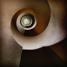 Nautilus: la spirale delle emozioni generata dalle fotografie